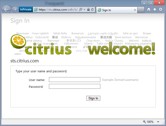 Branding your ADFS Sign-In Page in 3 Easy Steps | Citrius Blogs